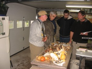 Discussing mushrooms after the collection