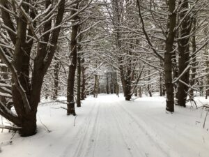 Honeoye Lake View Hike/Snowshoe